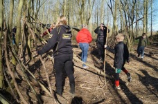 Team Building bushtucker trail